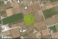 Field for sale - Marmari Marmari